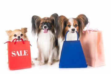 Best Discounts for Pet Business Customers